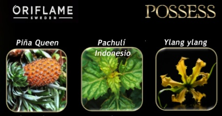 Possess EDP Oriflame Notas Olfativas