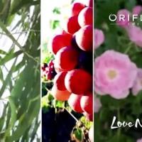Línea Love Nature de Oriflame - Limpieza y Cuidado facial